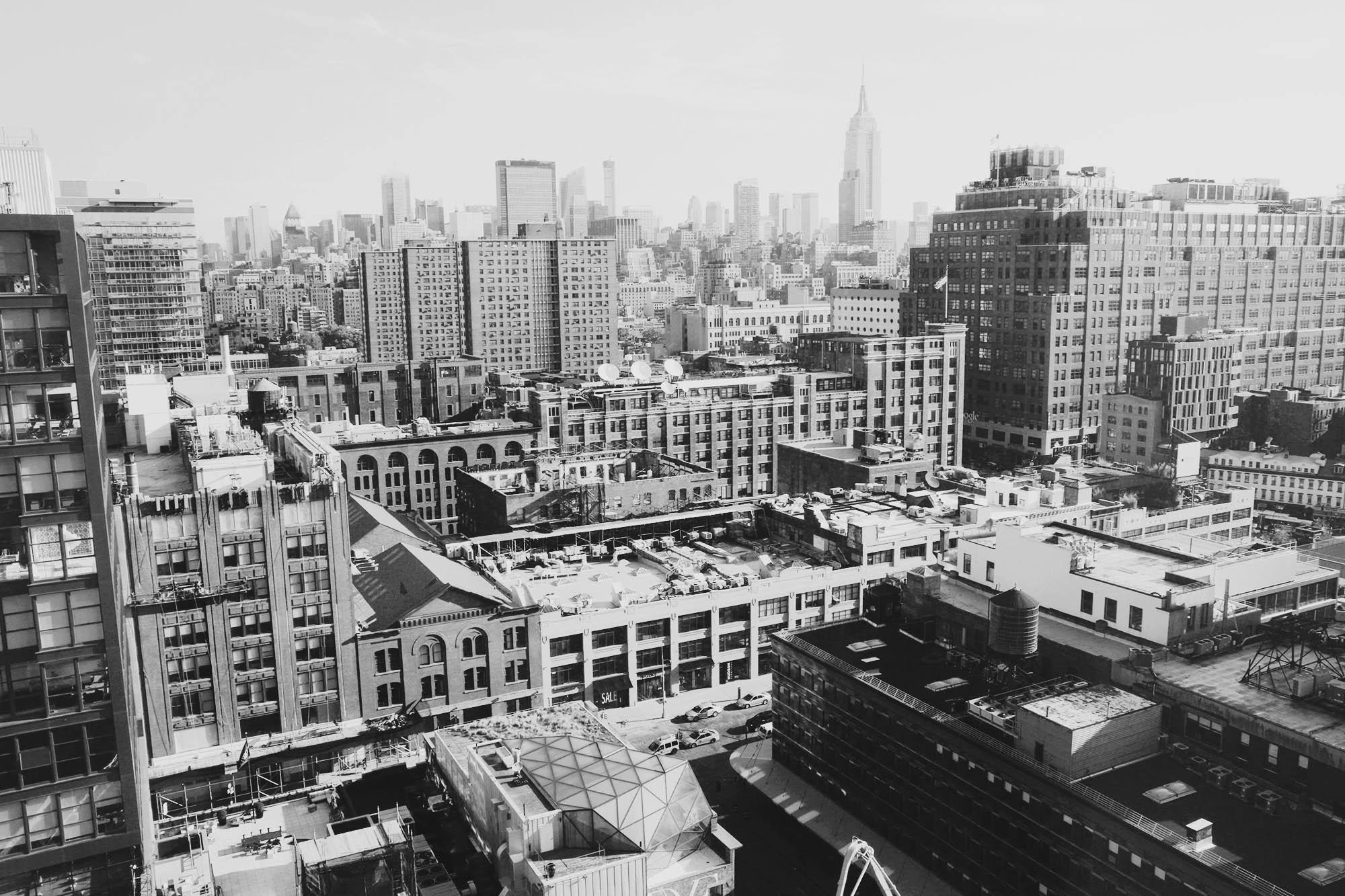2017-04-The-Standard - the-standard-new-york-nectarandpulse-view-25.jpg